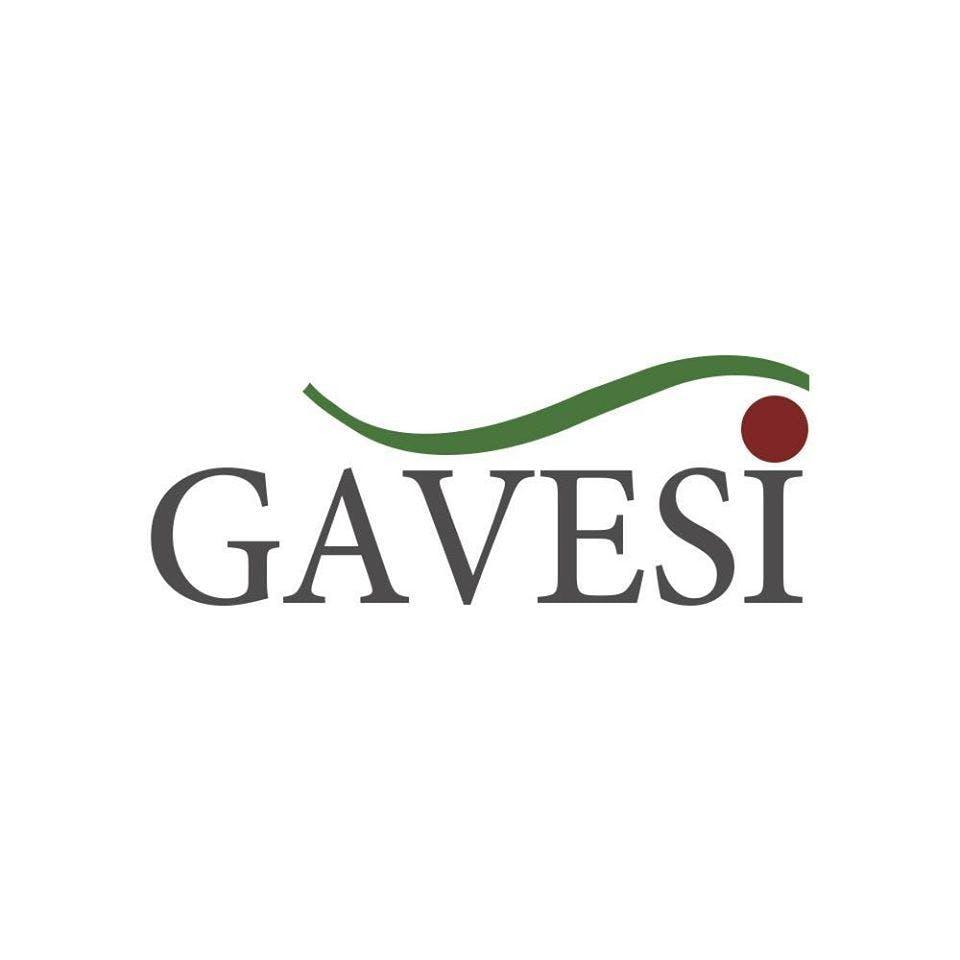 GAVESI